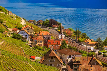 Top Lavaux Vineyards Switzerland Photo