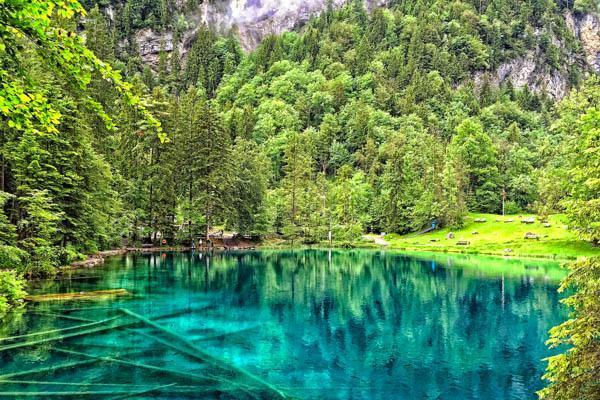somedaytrips discover blausee blue lake switzerland