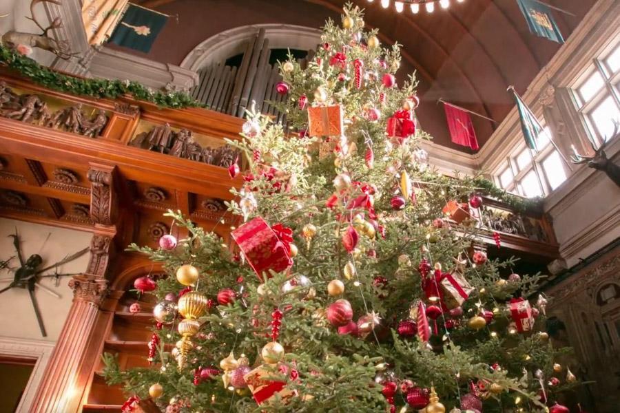 SomedayTrips - Biltmore Christmas Tree Raising Celebration