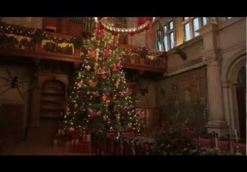 Biltmore Christmas Tree Raising…