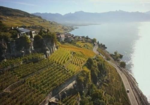 UNESCO Lavaux Vineyard Terraces…