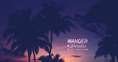 WANDER IN PARADISE | Treasured Memories from Playa Junquillal, Guanacaste, Costa Rica