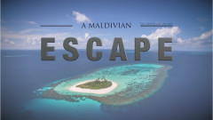 A Maldivian Escape | 4K by Veerdonk Visuals